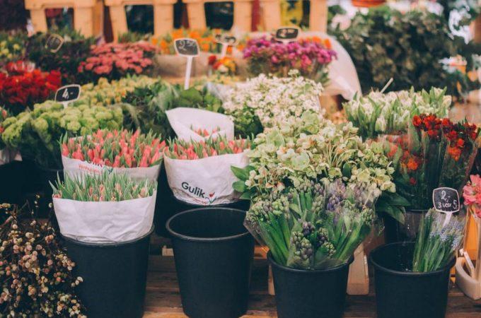 Alsancak Çiçek Gönderme Hizmetleri